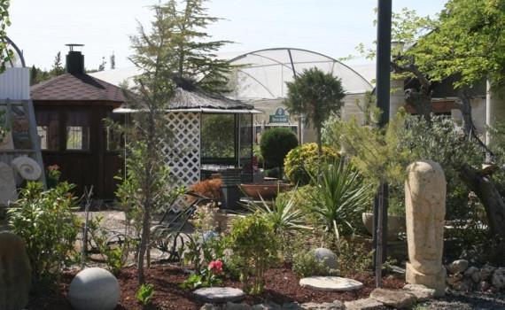 Vendedor destacado garden center ejea agroterra blog - Garden center ejea ...