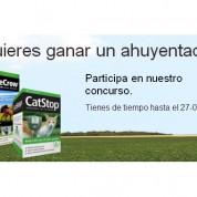 cabecera_concurso